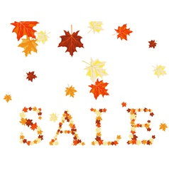 autumn sale vector image