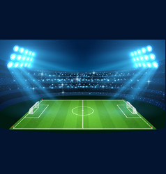 Soccer stadium with empty football field and vector