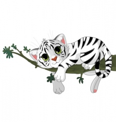 tiger is on a branch vector image
