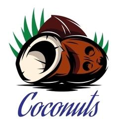 Picture with three broken coconuts vector