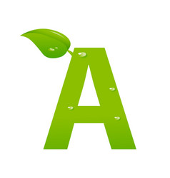 green eco letter a vector image