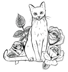 hand drawn ink doodle cat and flowers on white vector image