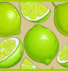 Lime fruits pattern on color background vector