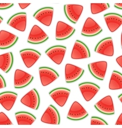 Seamless Background with Watermelon vector image