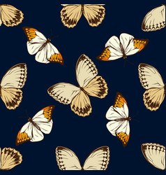 seamless pattern with hand drawn colored hebomoia vector image
