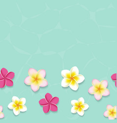 Tropical frangipani flowers in water vector