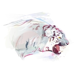 White Tiger Watercolor vector