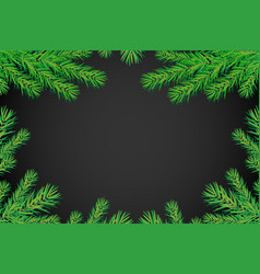 background with christmas trees branches vector image