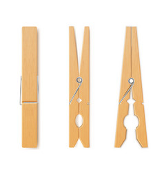 Clothes pin set housework and laundry clothespins vector