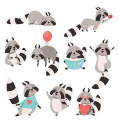 Collection of cute funny raccoon animal cartoon vector