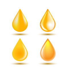 drops oil isolated on white background vector image