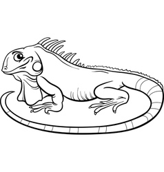 Iguana cartoon coloring book vector