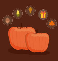 Pumpkins food for thanksgiving day with set icons vector