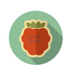 Raspberry flat icon fruit vector