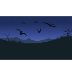 Silhouette of pterodactyl at night vector image vector image
