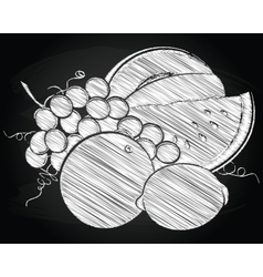 Harvest fruit and berries vector image