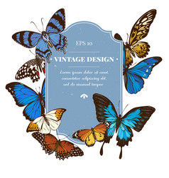 badge design with colored papilio ulysses morpho vector image