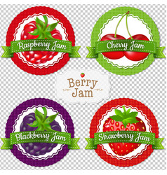 berry labels set vector image