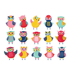 bundle of different funny owls or owlets isolated vector image
