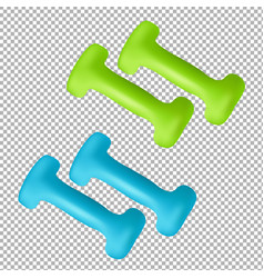 dumbbells isolated on transparent background vector image