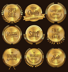 golden medallion with laurel wreath collection 1 vector image