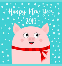 happy new year 2019 pig wearing red scarf chinise vector image