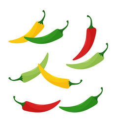 Hot chili peppers jalapeno vegetables cayenne vector