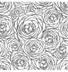 rose seamless pattern black and white vector image