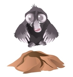 Sad mole crying next its mink vector image