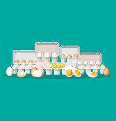 set eggs in cardboard package isolated on green vector image