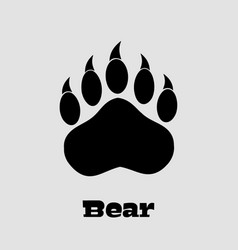 Black bear paw with claws vector