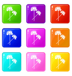 Carnation set 9 vector