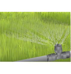 Irrigation sprinkler automatic watering vector