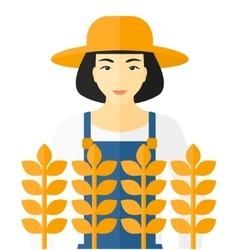 Man in wheat field vector