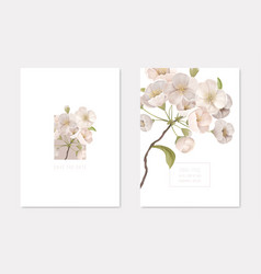 wedding invitation card set with cherry branch vector image