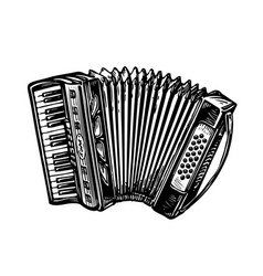 hand-drawn vintage accordion bayan music vector image