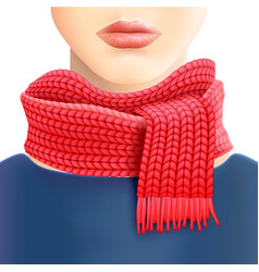 Woman Knitted Red Scarf Ad Print vector image