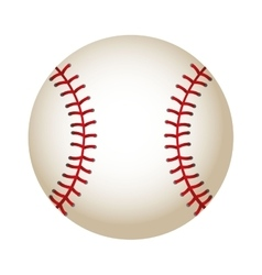 ball baseball equipment isolated icon vector image