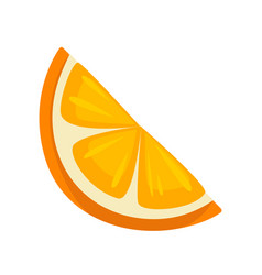 small slice of orange vector image