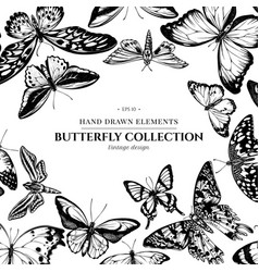 design with black and white papilio ulysses vector image