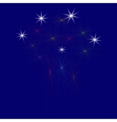 Large Fireworks Display - vector
