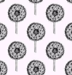 Sketch dandelion pattern vector
