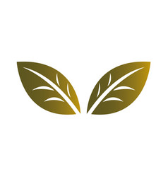 Design leaf for image corporate vector