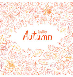 Fall leaf nature pattern with lettering hello vector