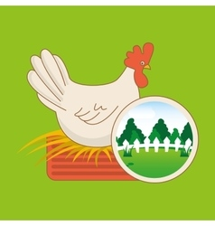 Farm countryside animal hen design vector