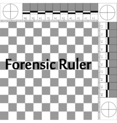 Forensic Ruler CSI vector image