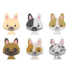 french bulldog mix vector image