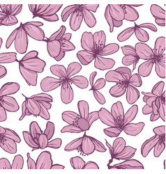pink blossom flowers on white background vector image