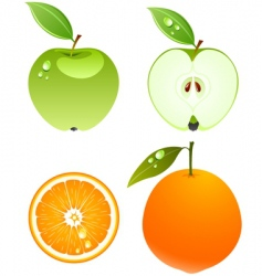 Apple and orange vector