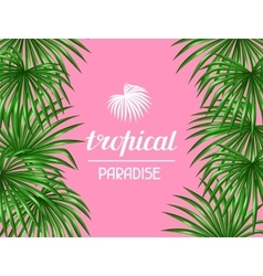 Paradise card with palms leaves Decorative image vector image